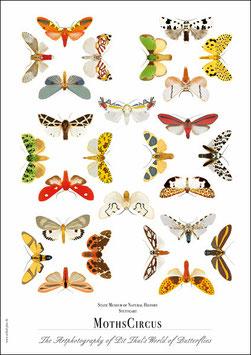 """Künstlerisches Plakat """"Moth Circus"""" - P007/03"""