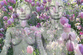 Tulips - FW 08-18 -
