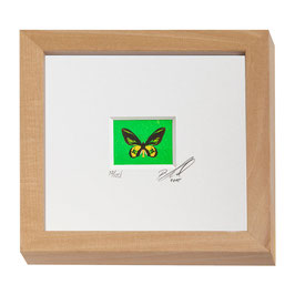 "AD-0033- Kunstdruck ""Schmetterling"" im Naturholzrahmen ""Natur"" 15 x 15 cm"