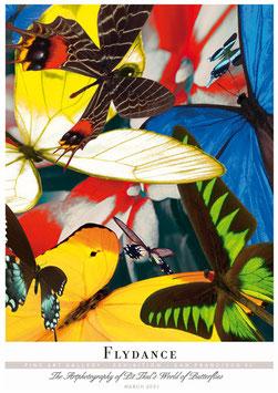 """Künstlerisches Plakat """"Flydance"""" - P007/02"""