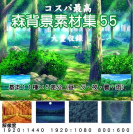 〈森背景素材集55〉