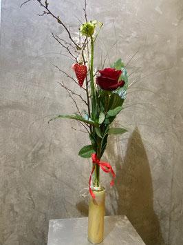 Rose einzeln aufgebunden