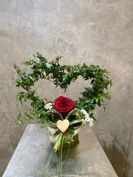 Herzefeu mit Einzelner Rose