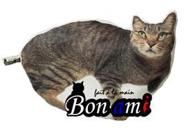 Bon ami ( ボ ナ ミ )
