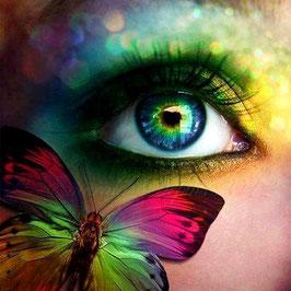 Oog en vlinder - R18186