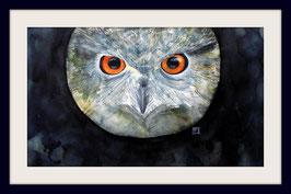 Kurzohreule - 40 x 62 cm - Aquarell - Watercolour -  ohne Rahmen und Passepartout