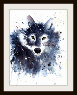 Wolf - 30 x 40 cm - Aquarell - Watercolour -  inkl. Passepartout 40x50cm - ohne Rahmen