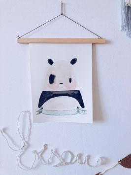 Pola der Panda