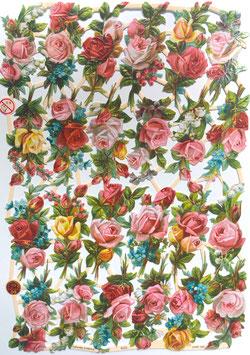 Poezieplaatjes rozen