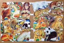 Poezieplaatjes Jonge wilde dieren