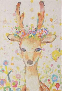 花冠のしかさんポストカード