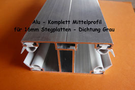 Alu - Komplett - Mittel-Verlegeprofil incl. EPDM Dichtung Grau