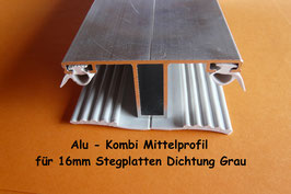 Alu - Kombi - Mittelprofil incl. Dichtung Grau