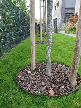 Rasenkanten Baumring Cortenstahl Edelrost Durchmesser 75 cm x 12 cm Höhe im 3-Set