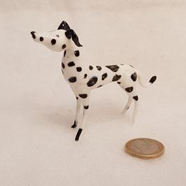 Dalmatiner (?)