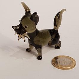 Kleiner Hund, Glas