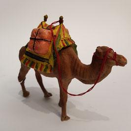 Kamel, Elastolin