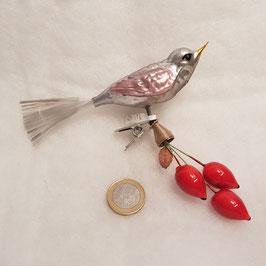 Vogel  mit roten Knospen