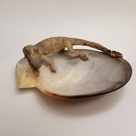 Reptil auf Muschel, alt