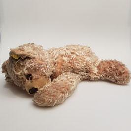 Teddy, Steiff (Nr. 7)