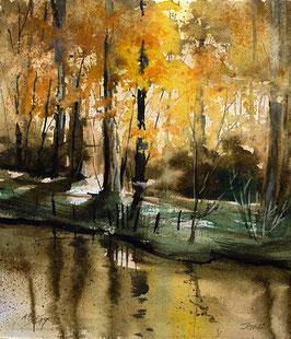 """Original Aqaurell von Jopie Bopp / """"Into the Light"""" Herbstlicht Waldlandschaft Odenwald"""