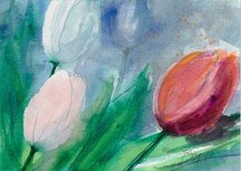Leinwandbild - Tulpen 2 , Aquarell
