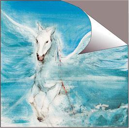 POSTER -  Pegasus / Element Luft