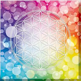 Blume des Lebens Farbenergie Bunt / Regenbogen