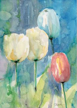 Leinwandbild - Tulpen 6 , Aquarell