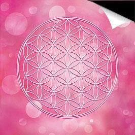 Poster FineArt - Blume des Lebens Farbenergie Magenta