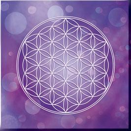 Blume des Lebens Farbenergie Violett