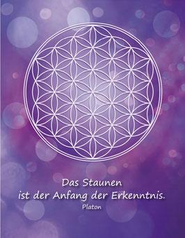 Postkarte, Blume des Lebens, Farbenergie Violett