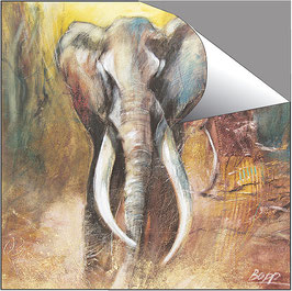 POSTER -  Elefant / Element Erde