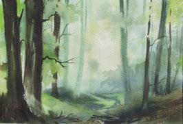 Waldlandschaft Odenwald