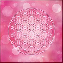 Blume des Lebens Farbenergie Magenta