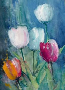 Leinwandbild - Tulpen 5 , Aquarell