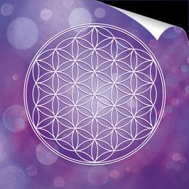 Poster FineArt - Blume des Lebens Farbenergie Violett