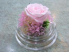 プリザーブドフラワー(ドーム型:小) ピンク