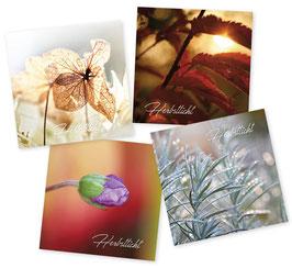 Herbstlicht-Kartenset