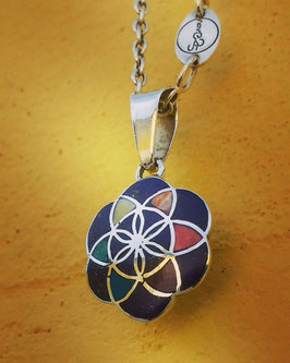 THE FLOWER OF LIFE / BLUE BERRY
