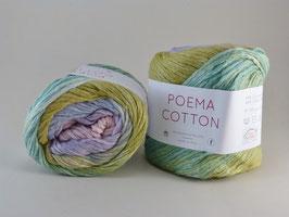 Laines du Nord Poema Cotton Fb 205