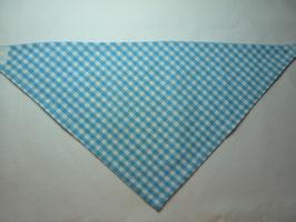Karo: hellblau/weiß
