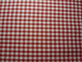Karo: rot/weiß
