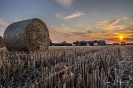 Feld in Vorsfelde, Foto-Nr. 2019_0994