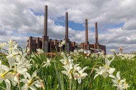 Kraftwerk, Foto-Nr. 2021_04_0951