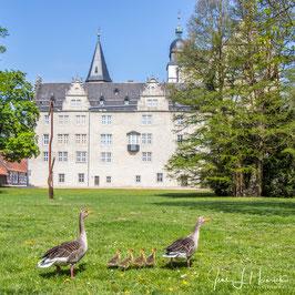 2019_0491_Rund ums Schloss_Q