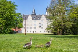 Schloss, Foto-Nr. 2019_0491