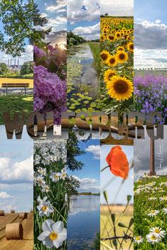 Collage Natur, Foto-Nr. 2020_1839