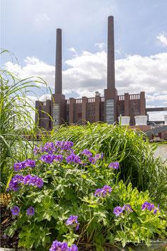 Kraftwerk, Foto-Nr. 2021_06_1327