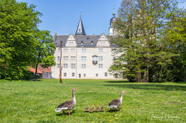 Foto mit Passepartout, Motiv siehe Foto, Bild-Nr. 2019_0491_Rund ums Schloss